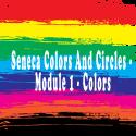 Seneca Colors & Wheels - Module #1-Color